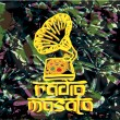 New Masala Logo Ancien